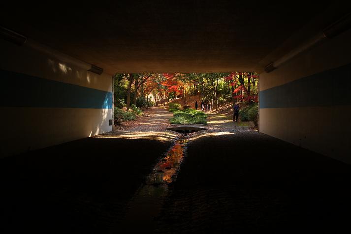 20111204御影橋a