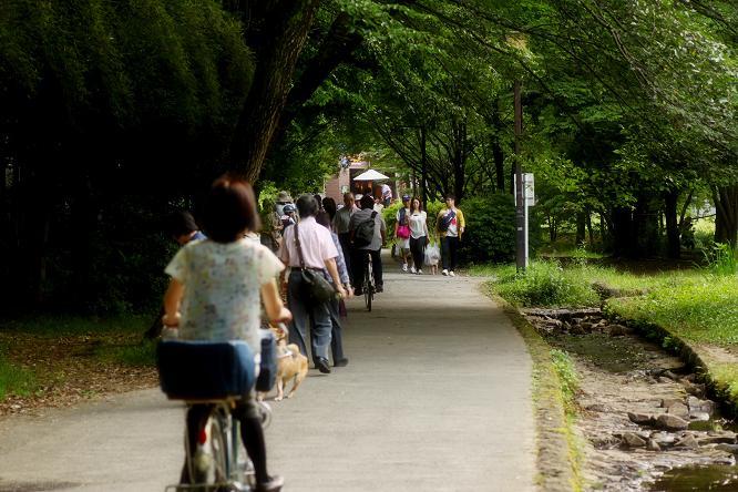 20120630せせらぎ公園10-2a