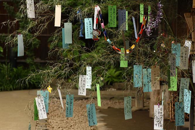 20120630せせらぎ公園4a