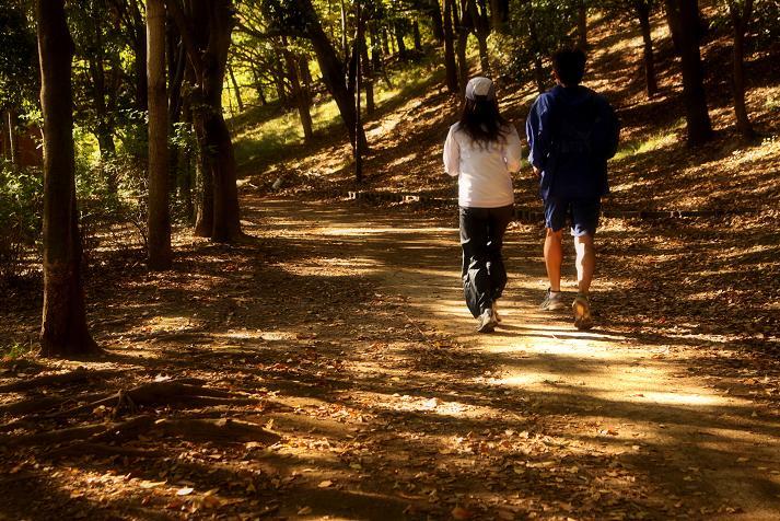 20121110徳生公園-2a