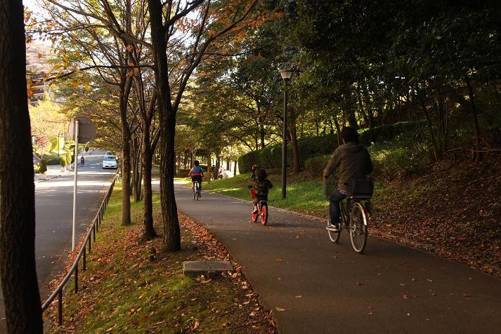 20121110徳生公園2a