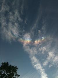 20101011御所虹