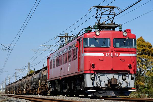 EF8178.jpg