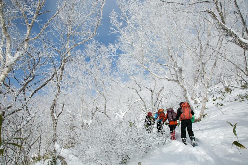 shiraoidake20140104-3955.jpg