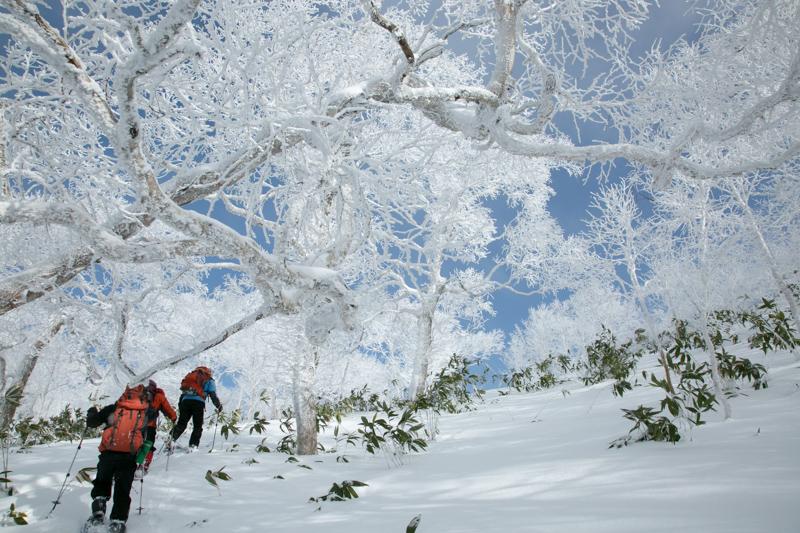 shiraoidake20140104-3969.jpg