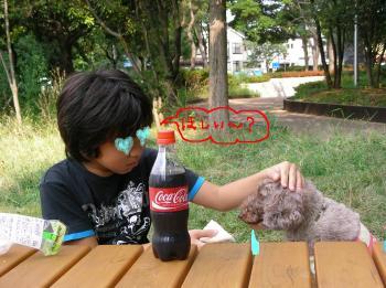 四人a_convert_20100919182317