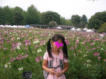 お花畑_convert_20100920214230