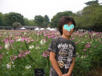 お花畑a_convert_20100920214203