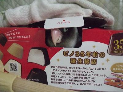 手袋andピノ 幸せ~!