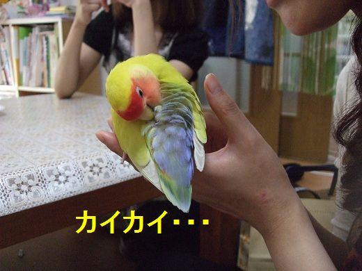 2012_09250001.jpg