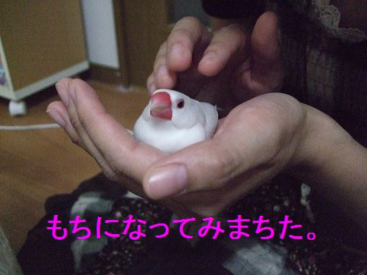 2012_09250024.jpg