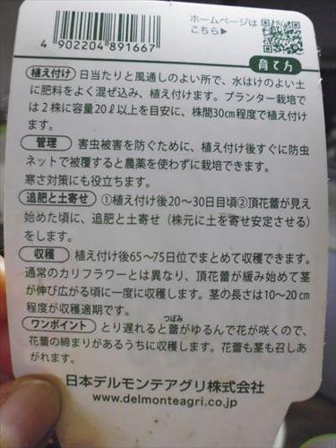 P1050780_R.jpg