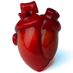 glassheart.jpg