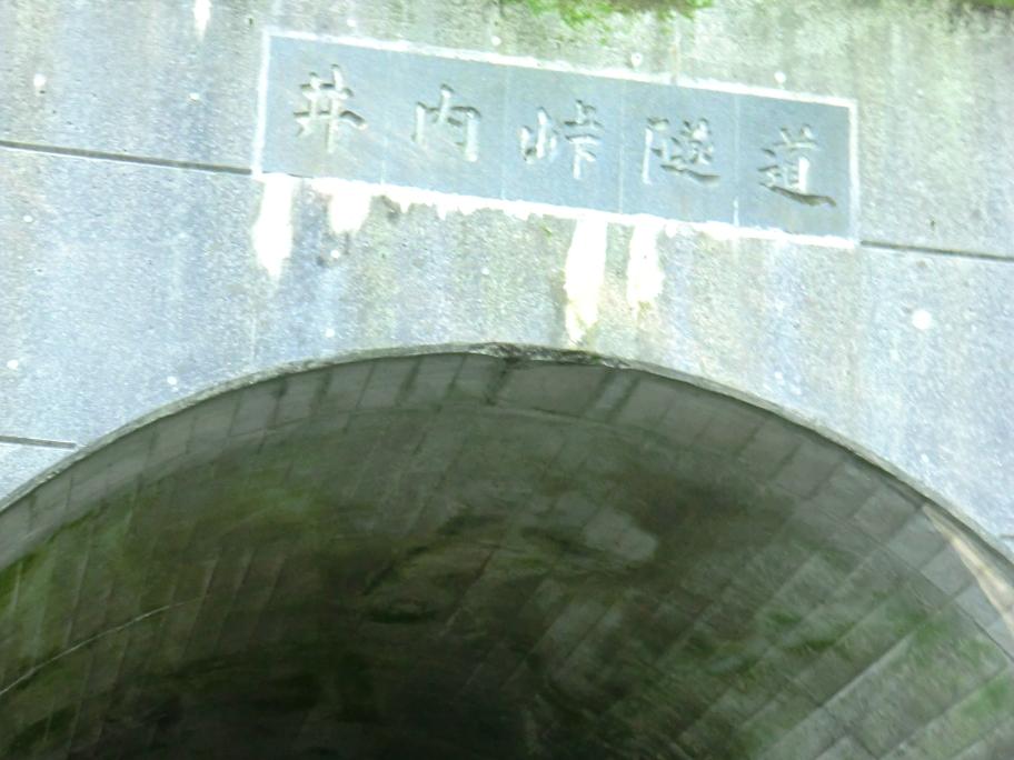 20110716_4井内峠(1080m)