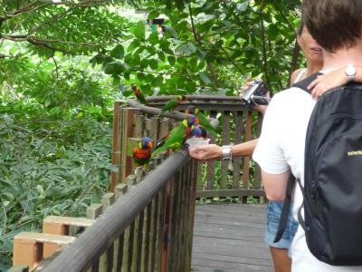 birdpark_006.jpg