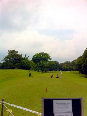 golf_00303.jpg