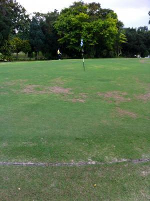 golf_00304.jpg