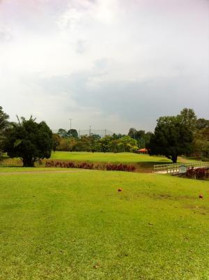 golf_00306.jpg