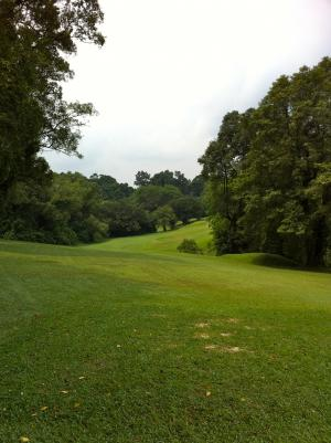 golf_00404.jpg