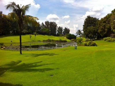 golf_005006.jpg