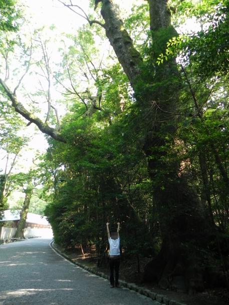 s-miekiji03_005.jpg