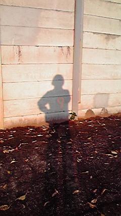 moblog_eff42a26.jpg