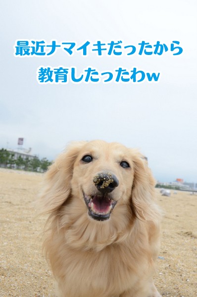 DSC_5482.jpg