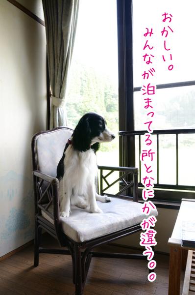 DSC_5969.jpg