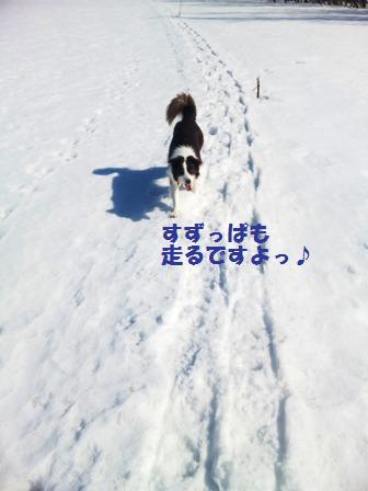 120310_105404.jpg