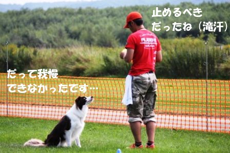 IMG_0210.jpg