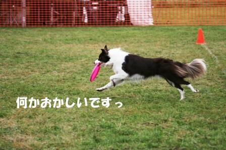 IMG_7698.jpg