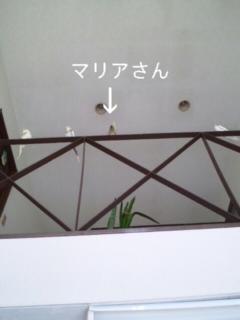 100816_103554_ed.jpg