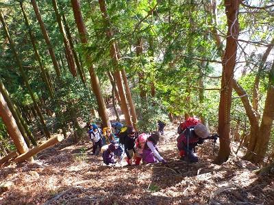 20140103入道ヶ岳03