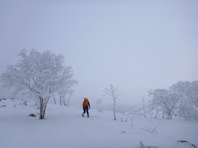20140111霊仙山10