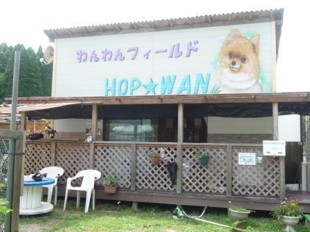 HOPWAN 001
