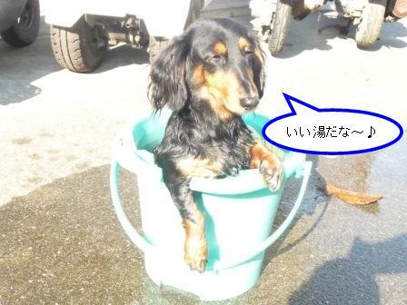 いい湯だな~♪
