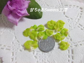 DSCF4667_20111024001752.jpg