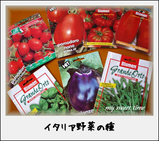 イタリアの野菜の種~イタリアントマト・ナス・バジルなど~