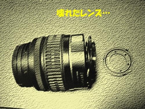 DSCF1002_20110301233650.jpg