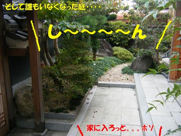 DSCF1025_20101026002151.jpg
