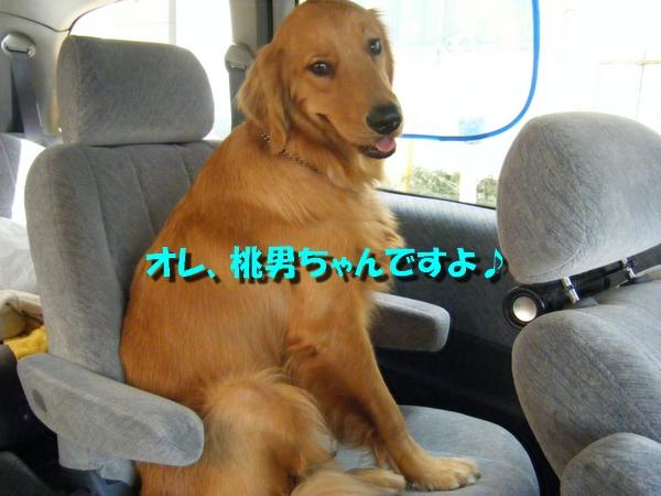 DSCF2032.jpg