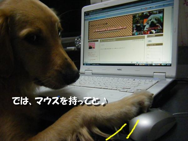 DSCF3016.jpg