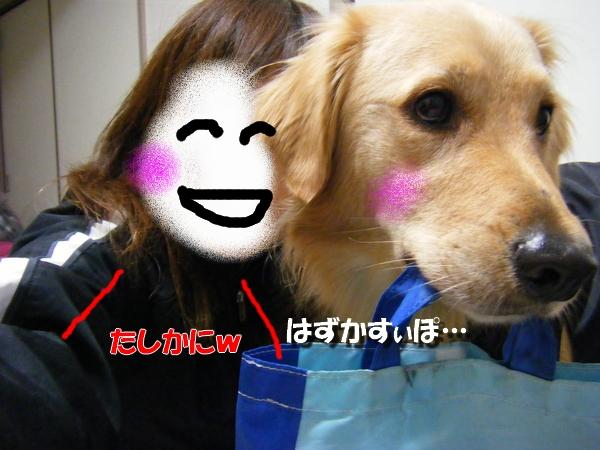 DSCF5002_20101102000303.jpg