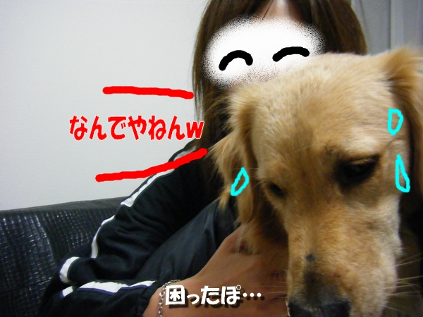 DSCF5005_20101102000302.jpg
