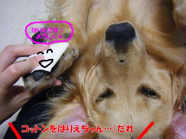 DSCF7018_20100826002913.jpg