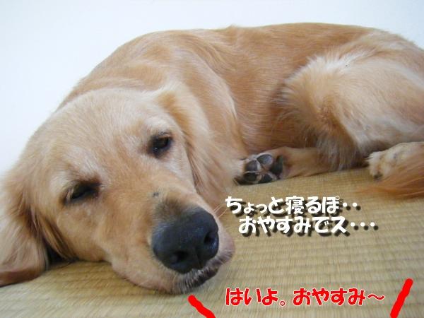 DSCF7098.jpg