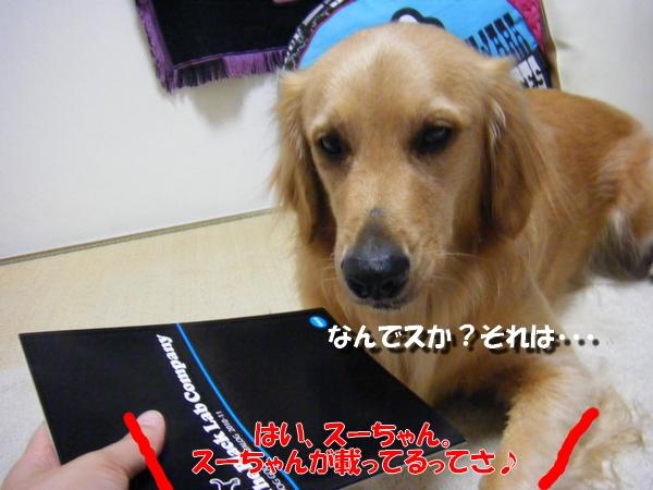 DSCF7130.jpg