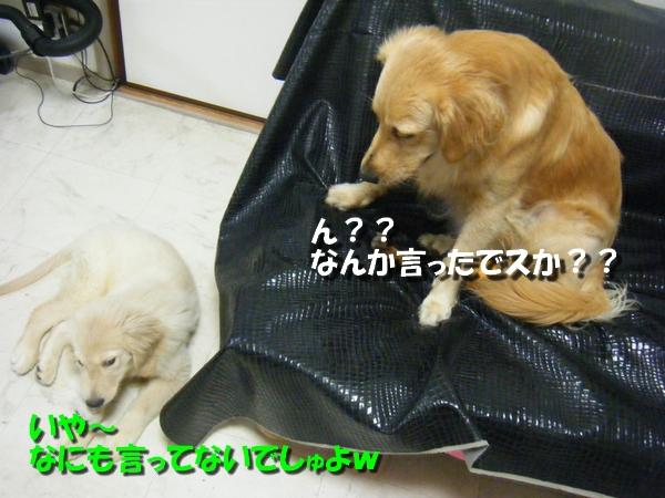 DSCF7665.jpg