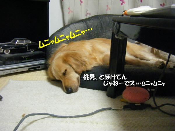DSCF7857.jpg