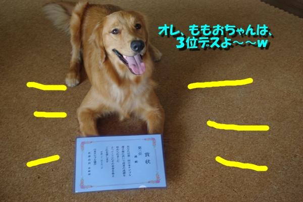 IMGP3584_20101010002202.jpg